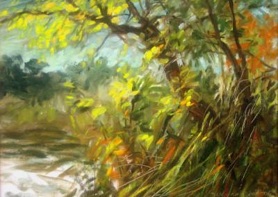 Foliage Splendor